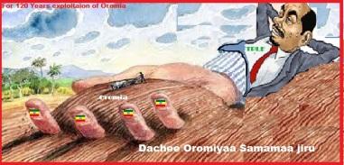 Oromia samamaa jirtu