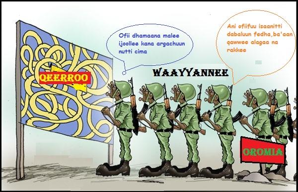 Wayyaanee