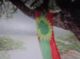 Alaabaa Oromiyaa (1)