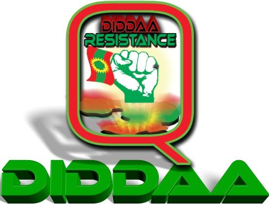 Oromo Free Speech: August 2014