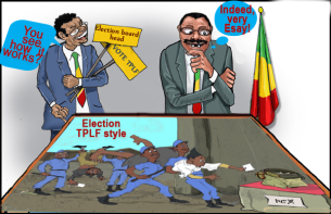 election_tplf_style