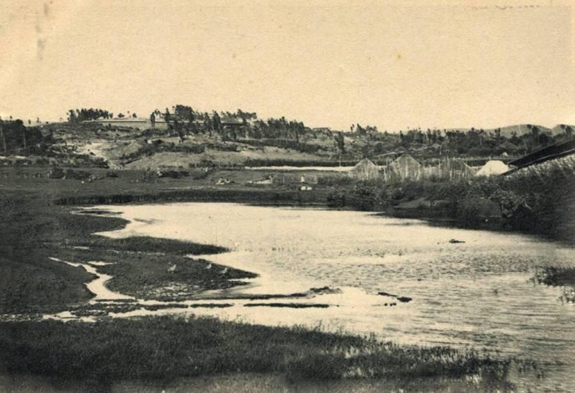 Filihuhaa 1892