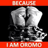 because-i-am-oromo