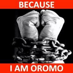 because-i-am-oromo