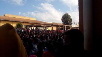 Bulee horaa1